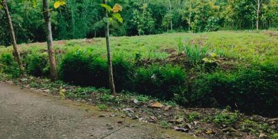 Tanah Datar Dibangun Rumah Tinggal Mojogedang Karanganyar