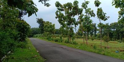Tanah 5567m² Idaman Tepi Jl. Raya Kerjo-Karanganyar
