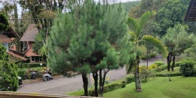 Jual Villa Murah SHM Daerah Grand Trawas Mojokerto