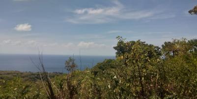 LAND FOR SALE NUSA TEGENUNGAN SUKAWATI