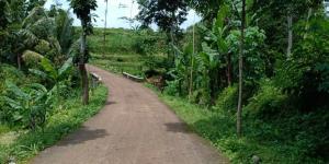 Tanah 3476m² Strtegis Dibangun Vila Dekat Terminal Wisata Karangpandan