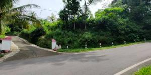 Tanah Idaman Strategis Buka Usaha Tepi Jl. Raya Mojogedang-Karanganyar