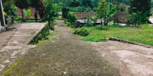 Tanah View Perbukitan Bonus Pohon Durian Karangpandan Karanganyar