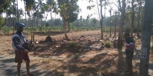 Dijual Tanah Srengat Blitar harga 250rb/m2
