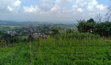 Tanah Idaman View Pemandangan Alam Kemuning Ngargoyoso Karanganyar Telp/WA: 082327612345