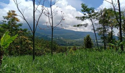 Tanah Idaman View Pemandangan Alam Kemuning Ngargoyoso Karanganyar Telp / WhatsApp 082327612345