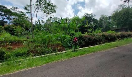 Tanah Strategis 1,1 Ha Tepi Jl. Raya Mojogedang-Karangpandan Kra