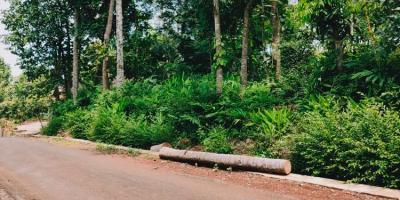 Tanah Datar Tepi Jalan Siap Dibangun Selatan Pasar Mojogedang Kra