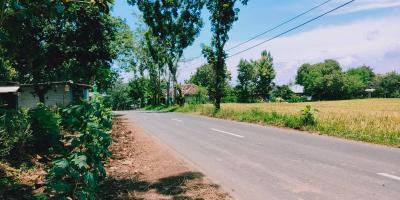 Tanah Idaman Strategis Buka Usaha Tepi Jl. Raya Kedawung-Sragen