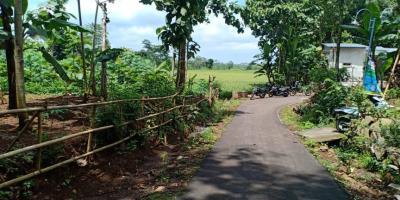 Tanah 1300m² View Sawah Kerjo Karanganyar