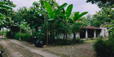 Tanah Bonus Rumah Jawa Siap Huni Kedawung Sragen