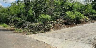 BU Banget Dijual Cepat!!! Tanah 2 Hektar Daerah Pecatu, Kuta Selatan Turun Harga hanya 1.25 jt per meter