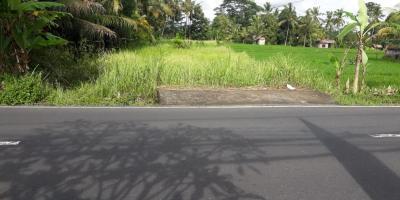 Dijual tanah di jalan utama Kedewatan ubud